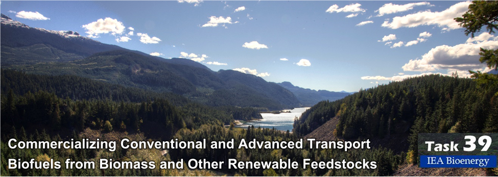 IEA Bioenergy Task 39 – Commercializing Conventional and Advanced Transport Biofuels from Biomass and Other Renewable Feedstocks